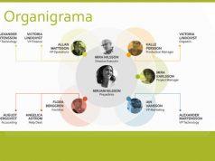 exemplu organigrama